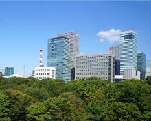 Foto van bos of park met skyline