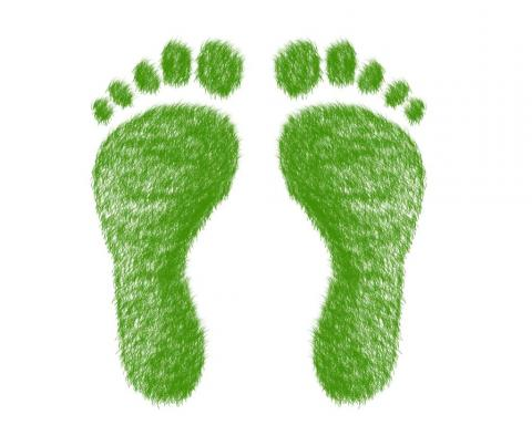 ecologische_voetafdruk