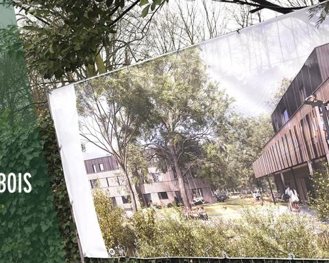 Dubois Houtskeletbouw Co-housing Wondelgem 2021 Pixii