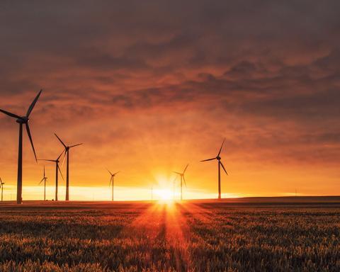 Windturbines in velden bij ondergaande zon